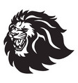 angry lion head roaring logo icon vector image