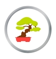 Bonsai icon in cartoon style isolated on white vector image vector image