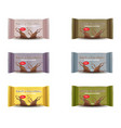 chocolate bar set product package vector image