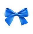decorative blue ribbon bow vector image vector image