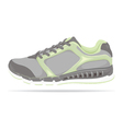 Detailed running shoe vector image vector image