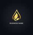 droplet leaf nature gold logo vector image