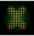 golden letter x vector image vector image