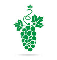 grape icon flat vector image vector image