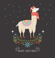 llama in red scarf and hat vector image vector image