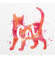 Painted animals cat vector image vector image