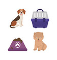 pet dogs cage and canned food icons set vector image vector image