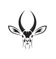 african gazelle head design on white background vector image