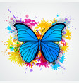 blue butterfly and blots vector image