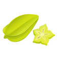 carambola whole and slice flat vector image