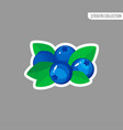 cartoon fresh blueberries icon isolated sticker vector image vector image