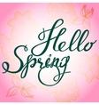 Hello Spring Pink vector image vector image