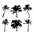 palm tropical set of black silhouette coconut vector image vector image