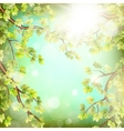 Season branches with fresh green leaves EPS 10 vector image