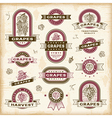 Vintage grapes labels set vector image