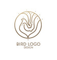 bird linear logo vector image