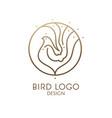 bird linear logo vector image vector image