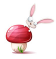 cartoon funny cute rabbit and mushroom vector image
