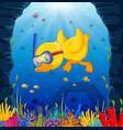 cute duck snorkeling underwater sea vector image vector image