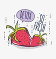 detox and fresh fruits vector image