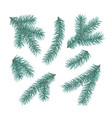 green fir branches set a christmas tree vector image