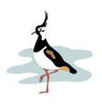 lapwing bird vanellinae cartoon image vector image