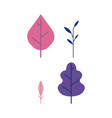 plant leaves set - decorative elements of trees vector image vector image