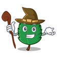 witch mint leaves mascot cartoon vector image vector image