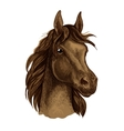 Brown mustang horse artistic portrait vector image vector image