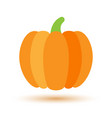colorful pumpkin icon with shadow gourd flat vector image