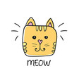 cute cat face drawing and meow sign vector image vector image