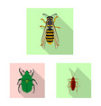 isolated object of insect and fly icon set of vector image vector image