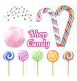 realistic candies - cotton candie and vector image vector image