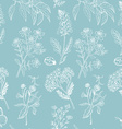 Seamless pattern with herbs on blue background vector image vector image