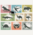 set postage stamps with animals and birds vector image