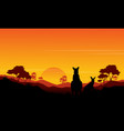 silhouette of kangaroo st sunset scenery vector image vector image