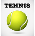 Single tennis ball with text vector image