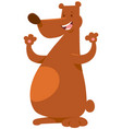 bear wild animal character vector image vector image