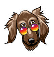 cute dog muzzle in rainbow glasses vector image vector image