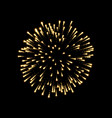 firework gold bursting isolated background vector image vector image