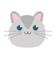 pet little cute kitten head cartoon isolated white vector image vector image