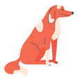 red dog sitting flat with lovely pet isolated vector image