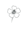 wildflowers simple black lined icon on white vector image vector image