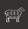 cut lamb meat drawn on blackboard menu vector image