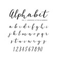 Hand drawn alphabet script font isolated