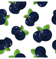 Seamless Pattern of Blueberries vector image vector image