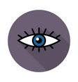 eye icon colored vector image