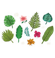 collection of bright tropical leaves and flowers vector image vector image