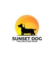 dog walk sunset design concept template vector image vector image