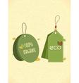 eco friendly labels vector image vector image